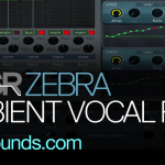 zebra ambient vocal pads